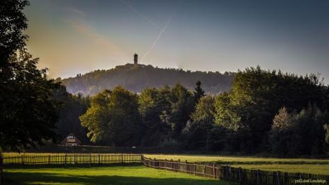Blick zum Hochwald | Hain - an der KAMMBAUDE