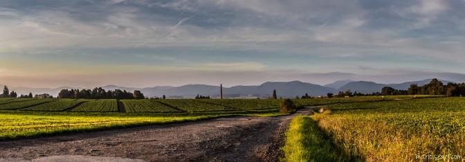 Zittau | Kummersberg – Panoramen wie Gemälde … Entrücktes aus der DigitalSchmiede