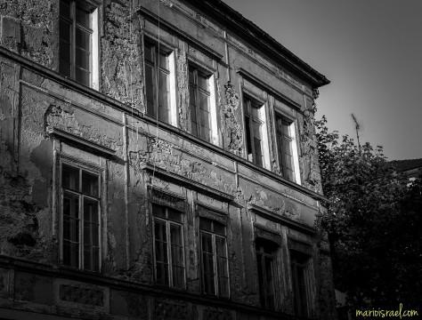 BrachenRomantik Amalien-Straße II