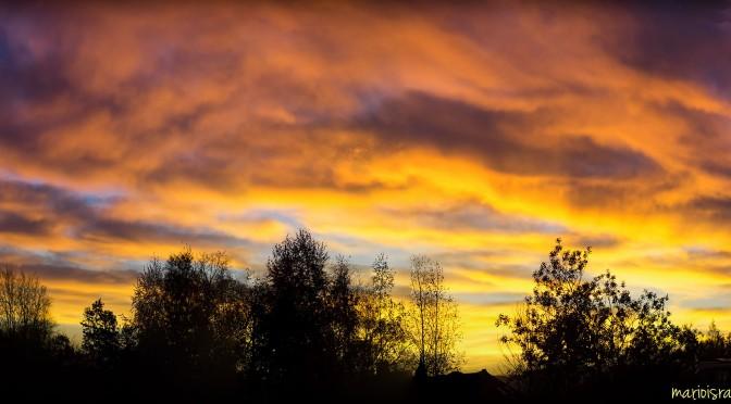 Morgenrot, Wolf und Panoramen…