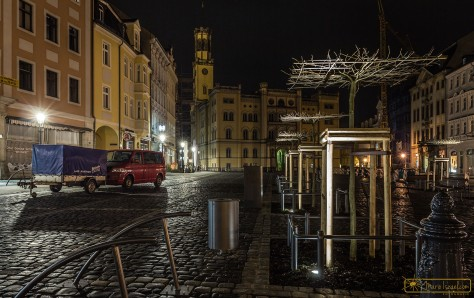 Neue Bäume - neues Licht | Zittau Marktplatz